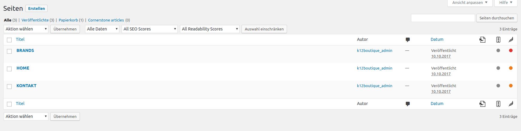 Eigene Homepage erstellen lassen